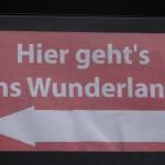 Lüneburger Heide_do11
