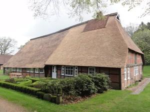 Lüneburger Heide_mi15